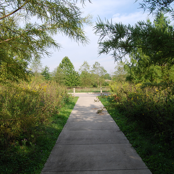 trail at Hazel Landing Park