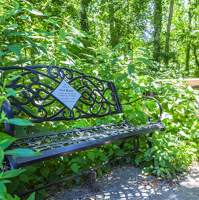 bench at Flowing Well Park