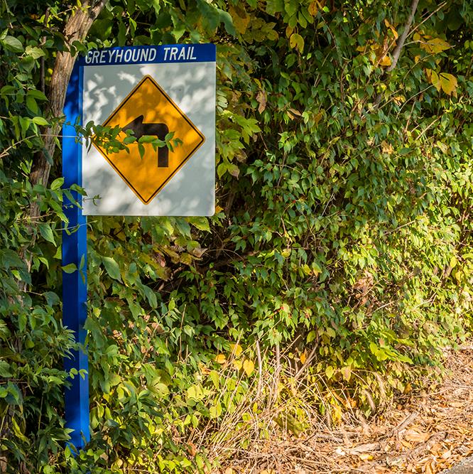 arrow sign on the Greyhound Trail