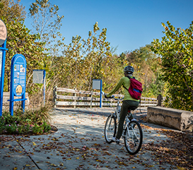 person riding a bike at Hagan-Burke Trail