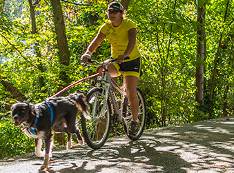 Woman riding a bike with her dog on the Monon Greenway