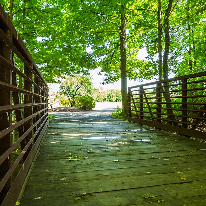 bridge trail at Meadowlark Park