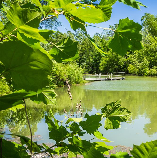 water at Meadowlark Park