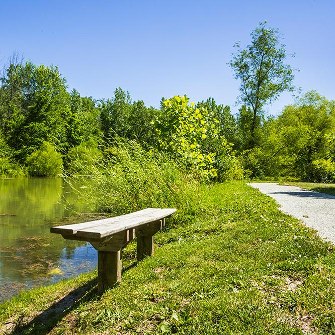 bench at Meadowlark Park