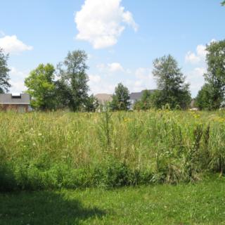 Prairie Meadow Park