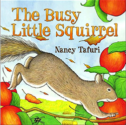 busy little squirrel book cover