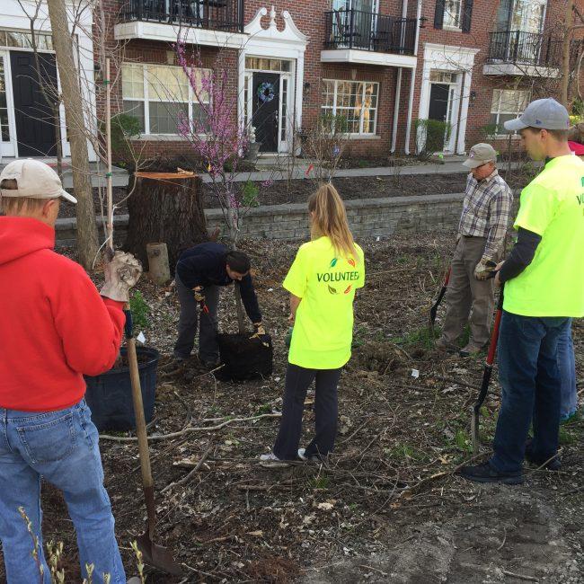 Group of volunteers maintaining green space