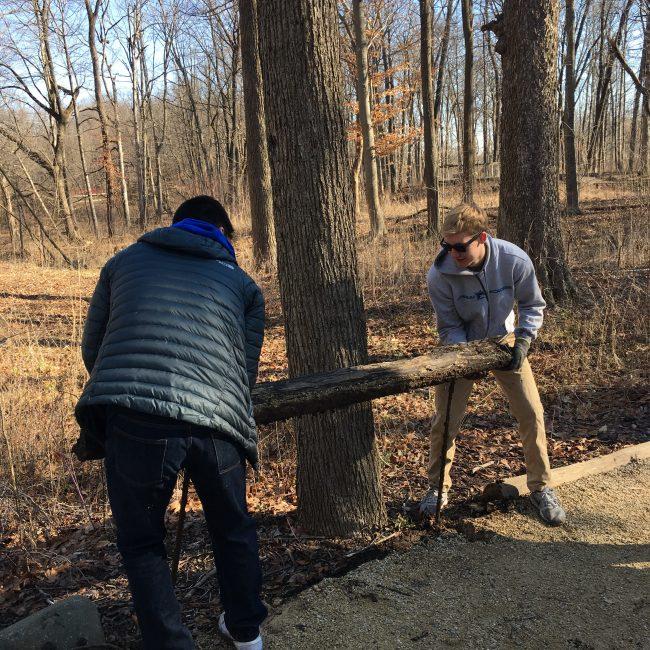 Volunteers in the woods
