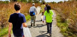 Nature volunteers