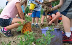 Kids digging in dirt
