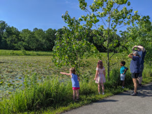 Knee High Naturalist participants on a hike through Central Park. Summer 2019.