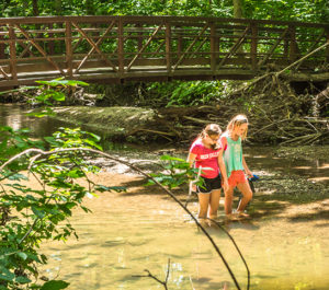 Children playing in creek at Flowing Well Park