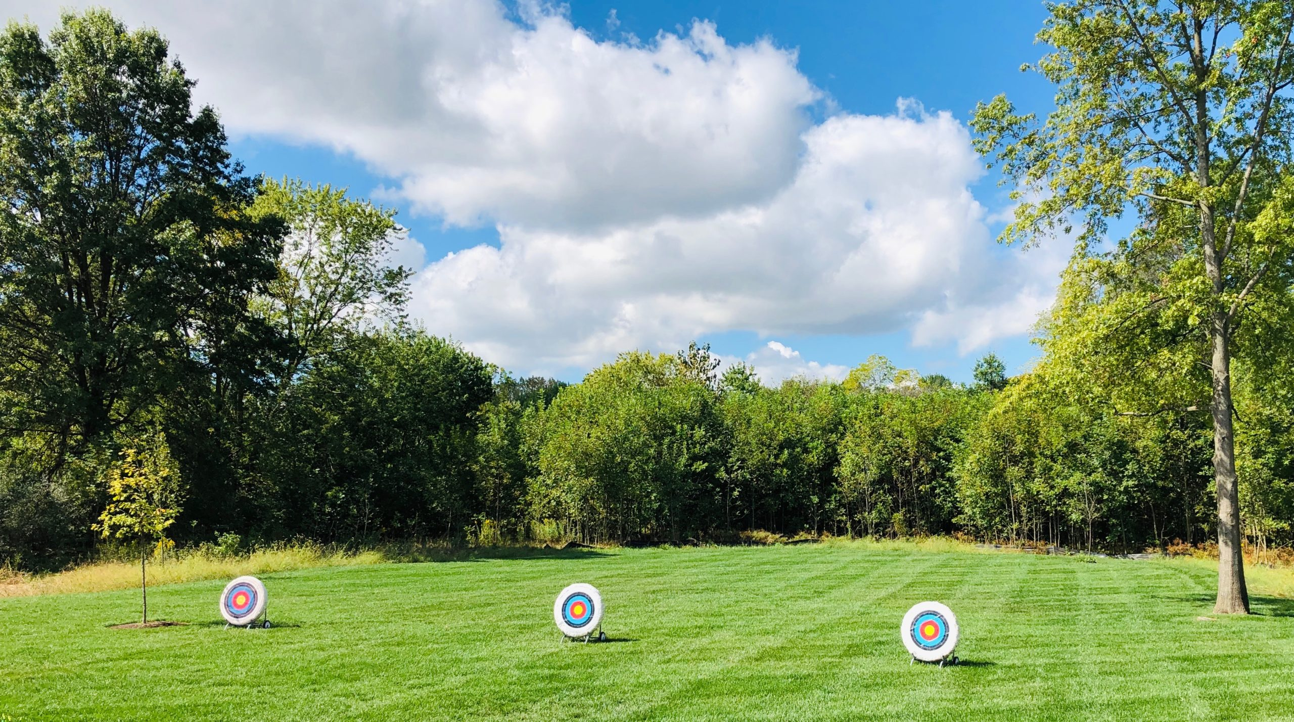 Targets in a field