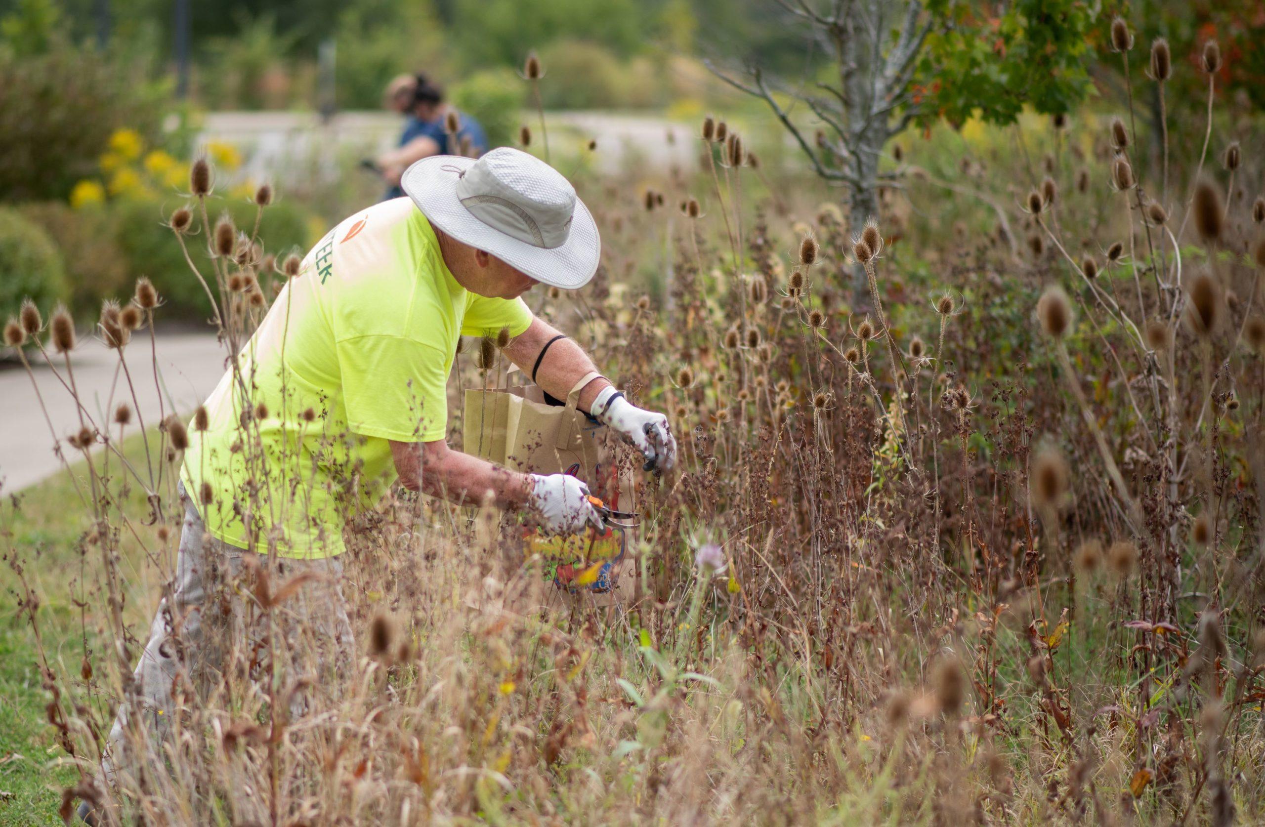 Volunteer working at park