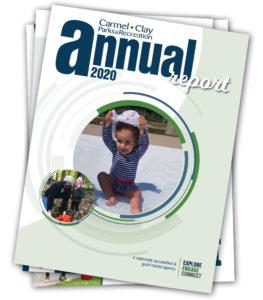 2020 Annual Report graphic